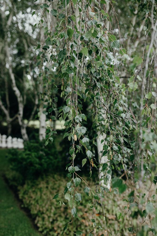 Wedding leaves at Tree Elle Retreat