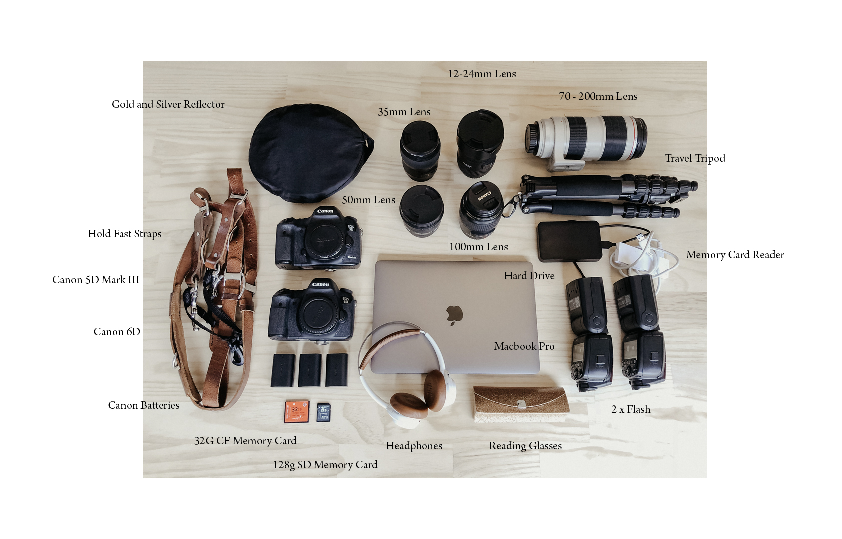 Camera bag, clements and the fox